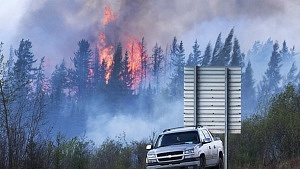 Stora suvar släpper ut CO2 som leder till skogsbränder.